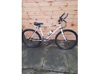 Buy mountain bike bike with accessories