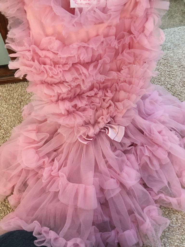 Beautiful extra soft pink tutu dress
