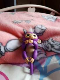Fingerling monkey
