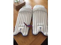Gray Nicolls -Cricket pads (youth Large)