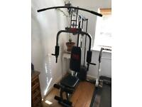 Pro power home fitness multi gym
