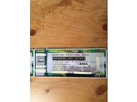 Reading Festival Ticket- Saturday 27th August (Headlining- Red Hot Chilli Peppers)