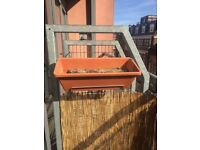 Planter with water plate included