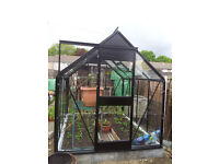 8' x 6' Greenhouse in very good condition with extra glass panels