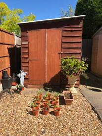 Garden shed for sale in GC