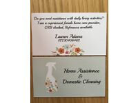 Home Assistance & Domestic Cleaning