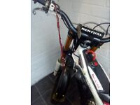 gas gas factory replica 350cc limited edition
