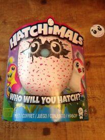 Hatchimals BNIB