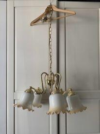 5 Light Shaded Chandelier Polished Brass Ceiling Light