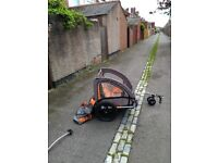 Halfords trail buggy