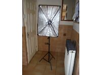 brand new photographers portrait lights x 2
