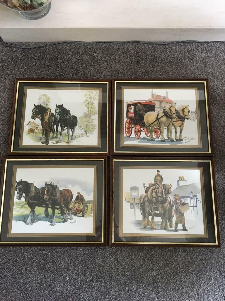4 Shire horse pictures