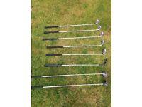 Pro One Golf Club Starter Set (Irons, Wedges, Putter, Woods)