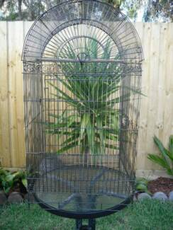 Large Bird Cage -  Swap for Female Budgie or Zebra Finches Carrum Downs Frankston Area Preview