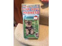 Dog car harness