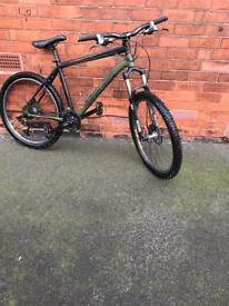 Custom mountain bike