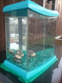 Ideal Starter Fish Tank & accesories
