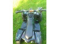 quad electric 36v