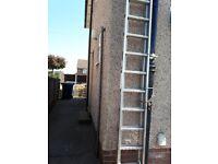Ladders - Youngman Extending 13 rungs x2