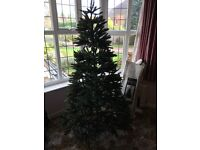 Christmas Tree by Wyvale