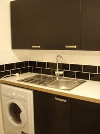 Modern One Double Bedroom Flat in Battersea/Clapham Junction SW11