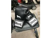 Lionsdale boxing gloves