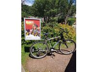 """Optima Storm Adults bike 19"""" frame with removable advertising opportunity"""