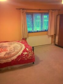 Large Double Room Within A Clean House, Prime Location, Short Term Considered.