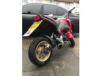 Honda MSX 125 Grom 2016 Perfect condition Custom parts (included) Bargain!!