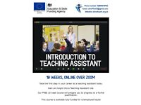 Free Introductory Teaching Assistant Course