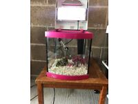 28l aqua fish tank v g c full set up with light filter heater lid gravel nice ornament all work