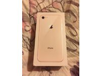 iPhone 8 64gb gold new