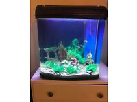 110 litre fish tank aquarium with filter flow and lights