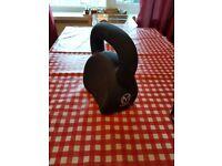 Matt roberts 16 kg kettlebell