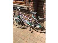 Raleigh Camaro ladies mountain bike