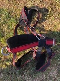 Harnesses climbing gear