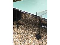 Table Tennis Table butterfly