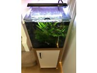 Aquanano 40 tropical fish tank and stand