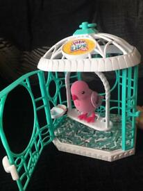 Little live pets bird in a cage, excellent condition