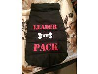 Leader of the Pack dog gillet