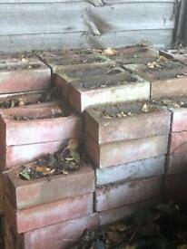 Red Leicester bricks