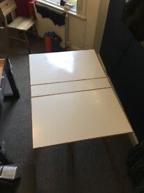 Folding Habitat Table
