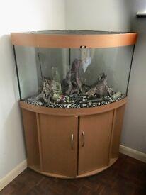 Juwel Trigon 190 litre Aquarium and Cabinet in Beech