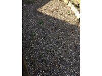 Decorative garden pebbels