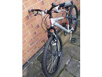 Mans raleigh freeride all terrain bike - hardly used