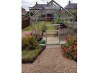 Greenhouse 6 x 6
