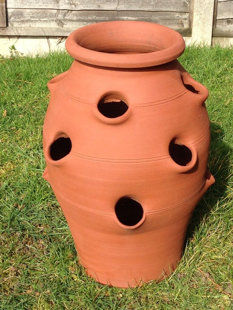 Large Terracotta Strawberry Planter For Sale In Woking
