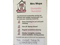 Mrs Mops Domestic cleaning services
