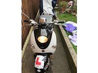 Lex moto molly