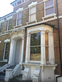 1 bed large split level garden flat in Stamford Hill, Short Let 6 week from Nov 16th
